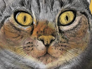Portada de 'Gatos ilustres'.