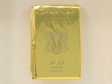 Detalle de Rescue Passport.